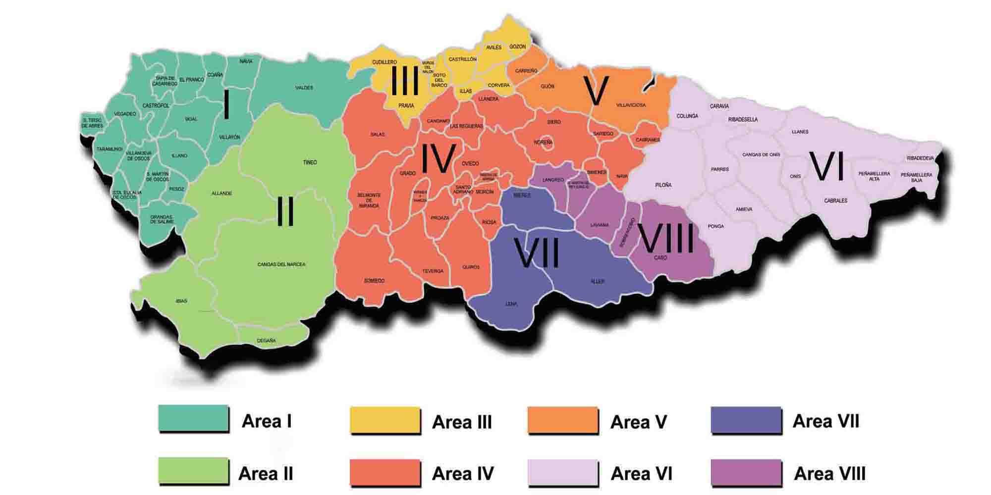 Resultado de imagen de areas sanitarias asturias sespa